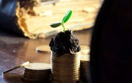 هک رشد در کسب و کار با هدف فروش بیشتر